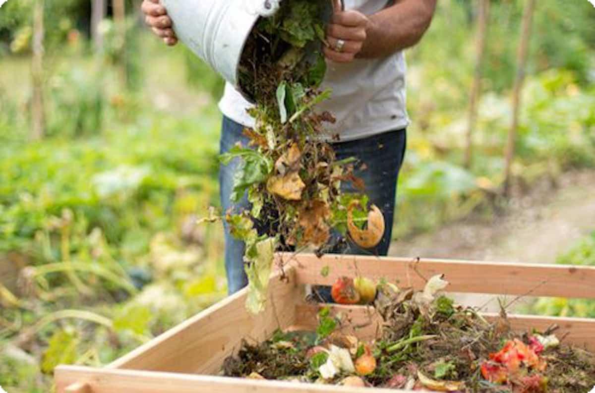 Avec ses déchets alimentaires, on peut fabriquer du compost par exemple